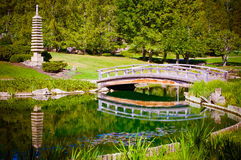 Japanese garden. Bridge over the pond in japanese garden Royalty Free Stock Photography