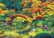 Japanese garden with bridge over a pond Stock Photography
