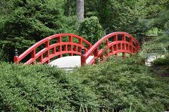 japanese garden bridge japanese garden bridge royalty free stock photo