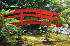 japanese garden bridge royalty free stock images