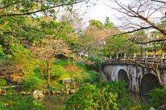 Japanese garden with bridge Stock Images