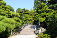 Japanese garden. Bridge in Japanese garden in summer Stock Image