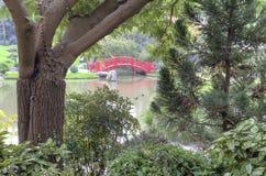 Japanese garden bridge. Vivid red over the water Royalty Free Stock Photos