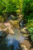 Japanese Garden brook  and stones in Wroclaw. Image was taken on July 2013 Stock Photos