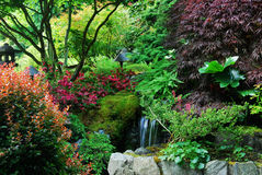 Japanese garden in butchart gardens Stock Photography