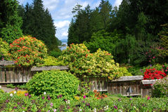 Japanese garden in butchart gardens Royalty Free Stock Photography