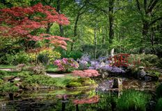 Japanese garden in Clingendael The Hague The Netherlands Royalty Free Stock Image
