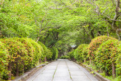 Japanese garden and concrete pathway Stock Photo