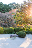 Japanese garden decor with rock and bush,  draw lthe line with g Royalty Free Stock Photography
