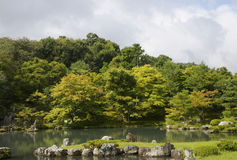 Japanese garden in early autumn, Kyoto Stock Images