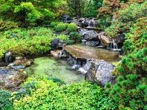 Japanese garden in early autumn Stock Photos