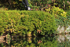 Japanese garden of Eikando Zenrinji temple in autumn, Kyoto, Jap Stock Photography