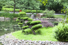 Japanese Garden, exotic plants, Wroclaw, Poland Royalty Free Stock Images