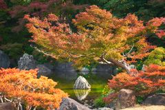 Japanese garden of Expo`70 commemorative park. Osaka, Japan - November 17, 2018: Japanese garden of Expo`70 commemorative park in autumn, shot in Osaka, Japan royalty free stock images