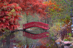 Japanese garden in fall. Beautiful Japanese garden in Michigan in autumn time Stock Photo