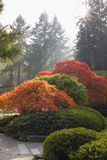 Japanese Garden in the Fall Season Stock Photo