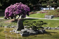 Japanese Garden in Germany Royalty Free Stock Photo