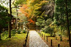 The Japanese garden in Honen-in. Japanese garden, Honen-in, Kyoto, Japan. The Honen-in is located only 300 meters away from the Ginkaku-ji. However, the tourists royalty free stock image