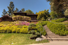 Japanese garden at the Huntington Botanical Gardens Royalty Free Stock Images