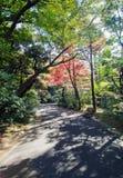 Japanese Garden In Autumn, Tokyo, Japan Stock Photo