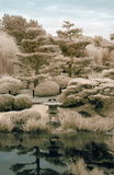 Japanese Garden in Infrared Stock Photography