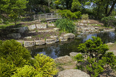 Japanese Garden Island in Regents Park, London Stock Images