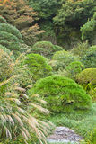 Japanese garden at Kamakura, Japan Royalty Free Stock Photography