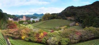 Japanese garden,Keishuen Japanese Garden Saga,Japan.  Stock Photo
