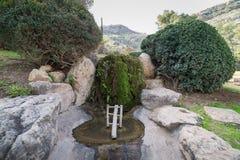 Japanese Garden at Kibbutz Hephzibah Royalty Free Stock Photo