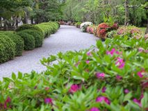 Japanese garden in Kyoto Royalty Free Stock Photos
