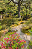 Japanese garden. Royalty Free Stock Images