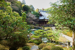 Japanese garden, Kyoto. Pond and trees in a garden in Kyoto, Japan Stock Image