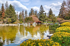 Japanese garden, lake and bridge Royalty Free Stock Photography