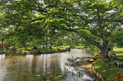 Japanese garden landscape Stock Photos
