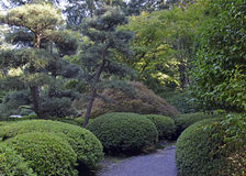 Japanese garden landscape Royalty Free Stock Image
