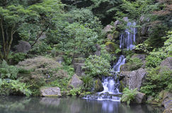 Japanese garden landscape Stock Photography