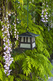 Japanese Garden. Japanese lantern in a stroll garden with decorative trees Stock Images