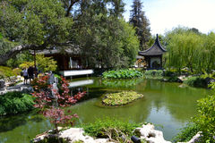 Japanese Garden Lilly Pond. Beautiful Japanese garden with water lily pond and pavilions Royalty Free Stock Photography
