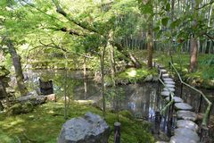 Japanese Garden with a lovely bridge and stunning landscape. Beautiful japanese garden with lovely trees in spring showcasing stepping stones bridge and vibrant Stock Photo