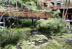 Japanese garden on maadeira island stock image