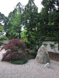 Japanese Garden. A Japanese Garden with Maple Tree, rock and gravel royalty free stock images