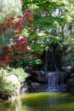 Japanese garden in Montevideo, Uruguay Stock Photos