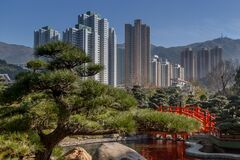 Japanese Garden near Towers Stock Image