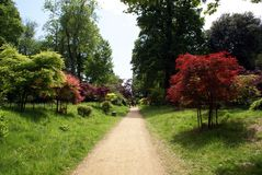 Japanese Garden Path Royalty Free Stock Photography