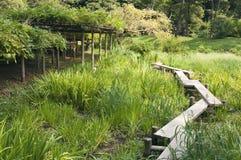 Japanese garden path stock image