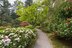 Japanese Garden Path in Spring Stock Photography