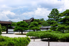 Japanese garden pine trees, Kyoto Japan Royalty Free Stock Photos