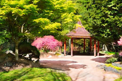Japanese Garden in Point Defiance Park. Tacoma, WA.  stock image