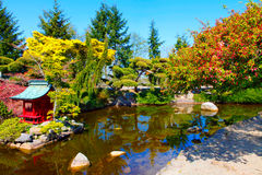 Japanese Garden in Point Defiance Park. Tacoma, WA. Autumn Splendor at Tacoma`s Japanese Garden in Point Defiance Park. Tacoma, WA stock image