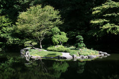Japanese Garden Pond royalty free stock image